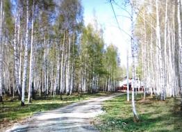 земельный участок, Вероники Тушновой ул.