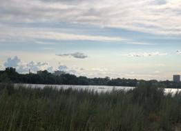 земельный участок, Оренбургский тракт ул.