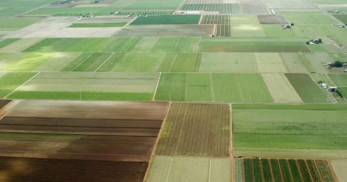 В Татарстане 380,4 тыс. га земель считаются бесхозными